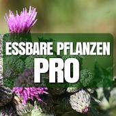 Essbare Pflanzen PRO