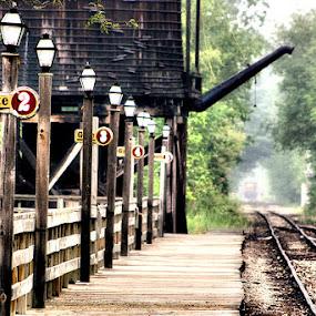 Train Station by Shelly B. - Transportation Trains