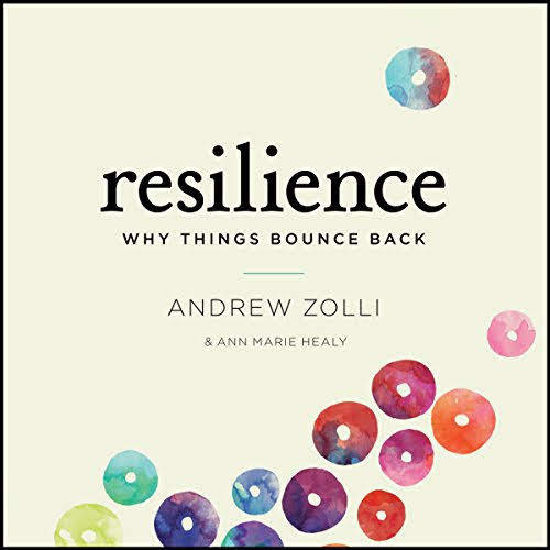 Resilience - Why Things Bounce Back by Andrew Zolli and Ann Marie Healy