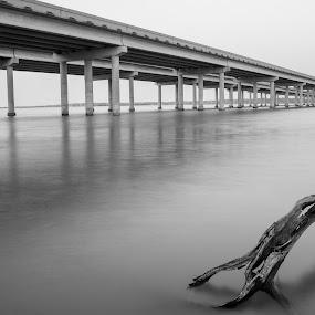 The road home by Gabriela Zandomeni - Buildings & Architecture Bridges & Suspended Structures ( black and white, lake, bridge )