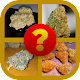 Download Master of Weed For PC Windows and Mac