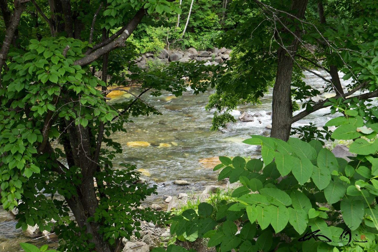 ホテル前に広がる不思議な流れの長流川の風景