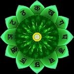 Anahata Heart Chakra 8.0