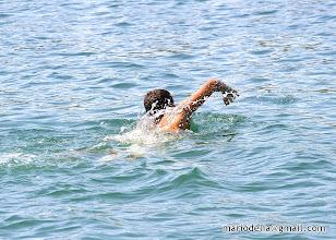 Photo: Good Swimmer