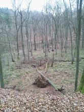 Photo: Stelle am Naturschutzgebiet ,Funckenhauser Bachtal' mit Blick zum Notrufpunkt E6-1 HA, wo ein Weg zur Wolfskuhle (geradeaus) bzw. (später nach rechts wendend) zu Im Kuckuck abgeht. In der Bildmitte Einmündung des zugehörigen Nebenbaches.
