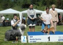 Photo: NAT Show Banska Bystrica, SK 2nd place with  ICh. Beardcaper´s Exquisite Dea-Dro Saturday, May 3, 2003