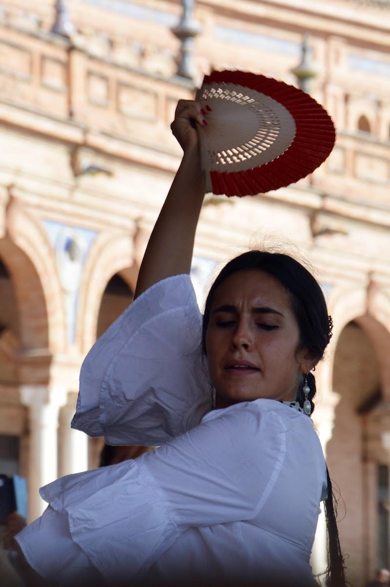 flamenco di tatiana morello