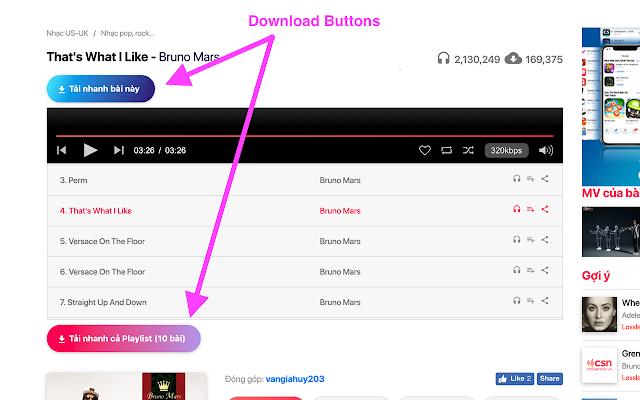 Chiasenhac Download Plugin