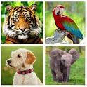 Hayvan Sesleri icon