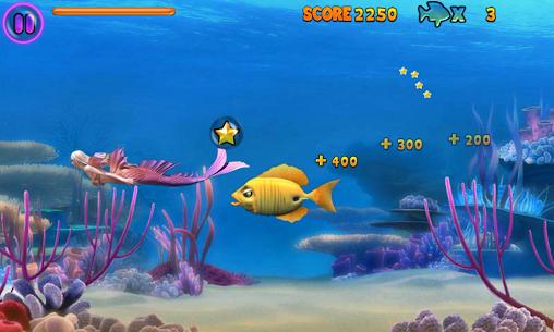 Fish Feeding Frenzy 3