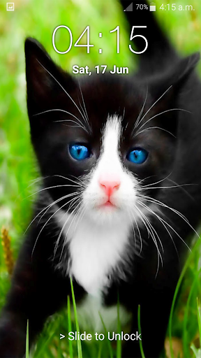 Kitty Cat Pin Lock Screen 6.2 screenshots 15