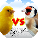 Canary vs goldfinch icon