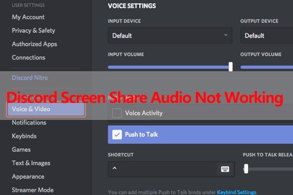 Discord Screen Share Audio Not Working