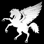 Flight Computer: Free(Digital & Manual) Pegasus Icon