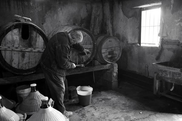 Profumo di vino.... di leonardo valeriano