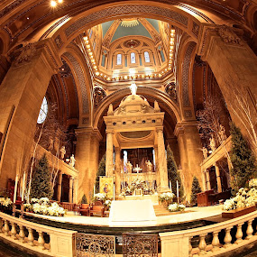 THE ALTAR by Michael Rey - Buildings & Architecture Places of Worship ( fisheye, church, minneapolis, basilica )