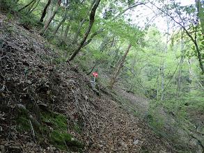 谷沿いに進み左の尾根へ