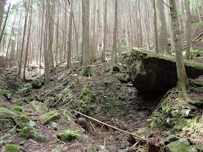 大きな岩が
