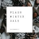 Flash Winter Sale - Instagram Post item