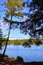 Photo: Scenic shot at Lowell Lake State Park by Bill Steele