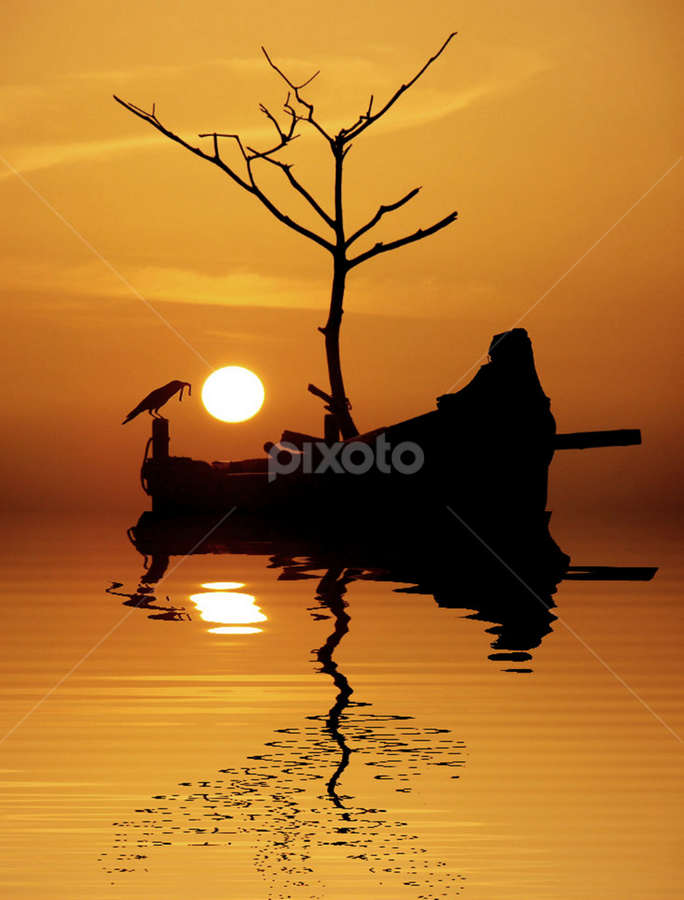Time for Dinner by Aroon  Kalandy - Landscapes Travel ( water, orange, calicut, concept, aroon kalandy, sea, reflections, crow, kerala, yellow, seascape, boat, sun, sky, sunset, photoscape )