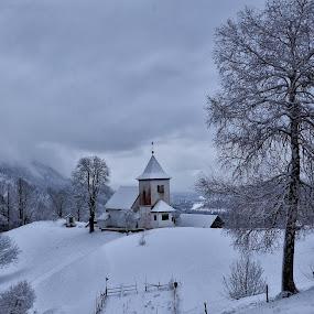 Na Gori by Bojan Kolman - Landscapes Travel (  )