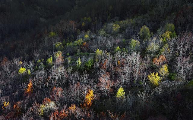 Inizia l'autunno di Alberto_Caselli