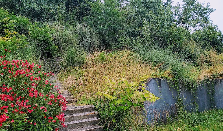Maison avec piscine Bouliac