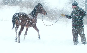 Photo: Eric working with a youngster in a blizzard!