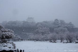 Photo: 梅林でも久しぶりに本格的な雪景色をのぞむことが出来た。(2014,02,14)