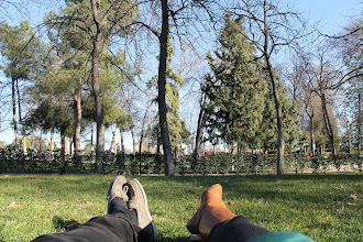Photo: Being blessed with the free time to do this at El Parque del Retiro...