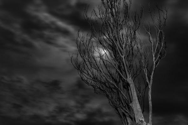 Luminosi nella nostra Oscurità di Matteomaiden