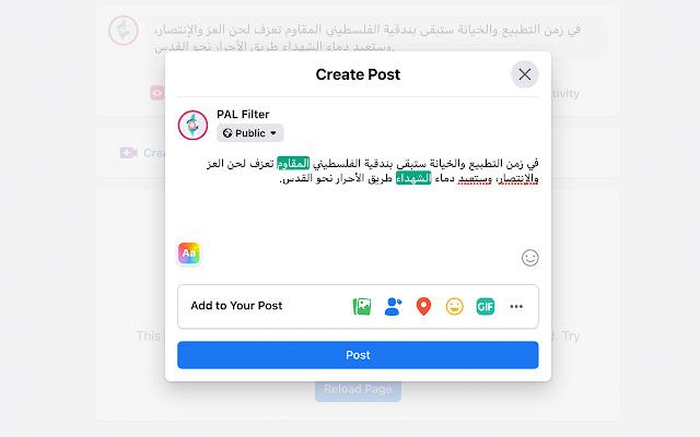 بال فلتر | PAL Filter