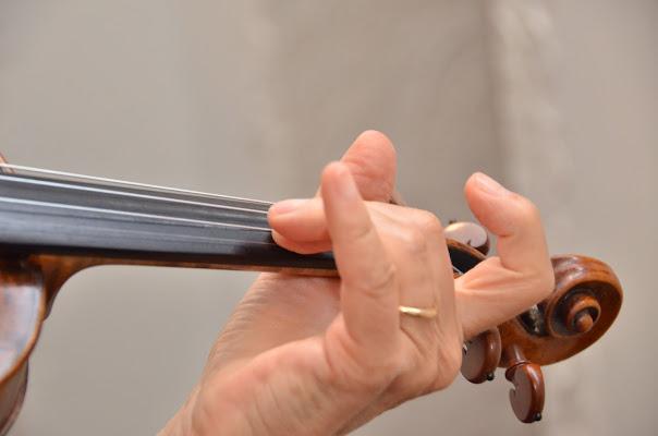 La dolce musica del violino di Domidi