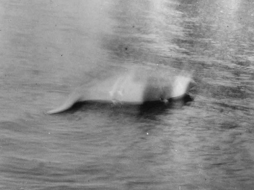 Potwór z Loch Ness, Hugh Gray