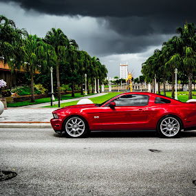 Ominous clouds aren't fast enough by James Newberry - Transportation Automobiles ( car, mustang, loud, red, automobile, sports car, green, outdoor, street, muscle, white, dark, paint, sporty, glaring )
