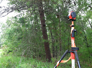 Photo: Land surveying is underway.  Photo by Lake Weir Living
