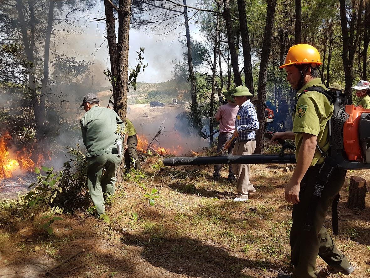 Lực lượng chức năng tham gia chữa cháy trong vụ cháy rừng xảy ra vào ngày 17/6 vừa qua