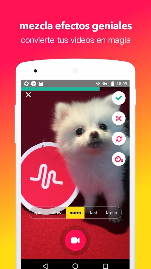 musical.ly: captura de pantalla