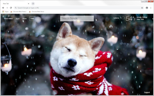 Menswear Dog HD Wallpapers New Tab Themes