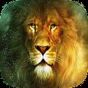 Lions Live Wallpaper icon