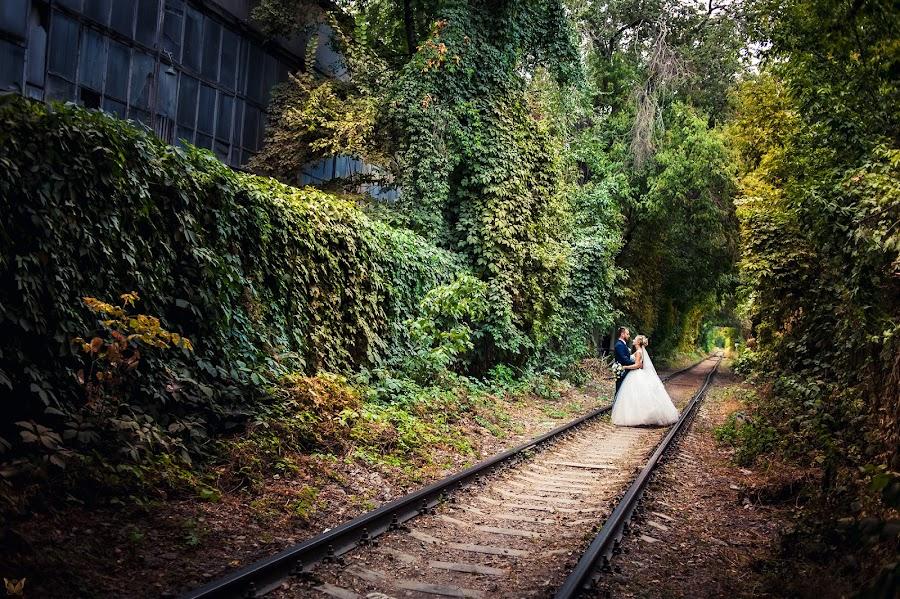 Φωτογράφος γάμων Aleksandr Vachekin (Alaks). Φωτογραφία: 17.04.2016