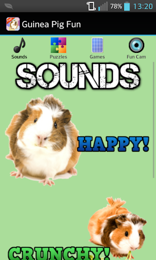 Guinea Pig Games Sounds