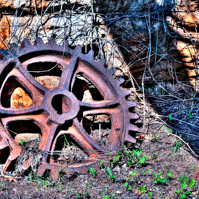 Gear by Philip O'Brien - Products & Objects Industrial Objects ( abstract, gear, hdr, still, rust, rustic, shapes geometric patterns ,  )