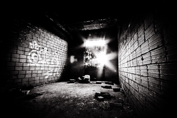 In the Dark di Simona Ranieri