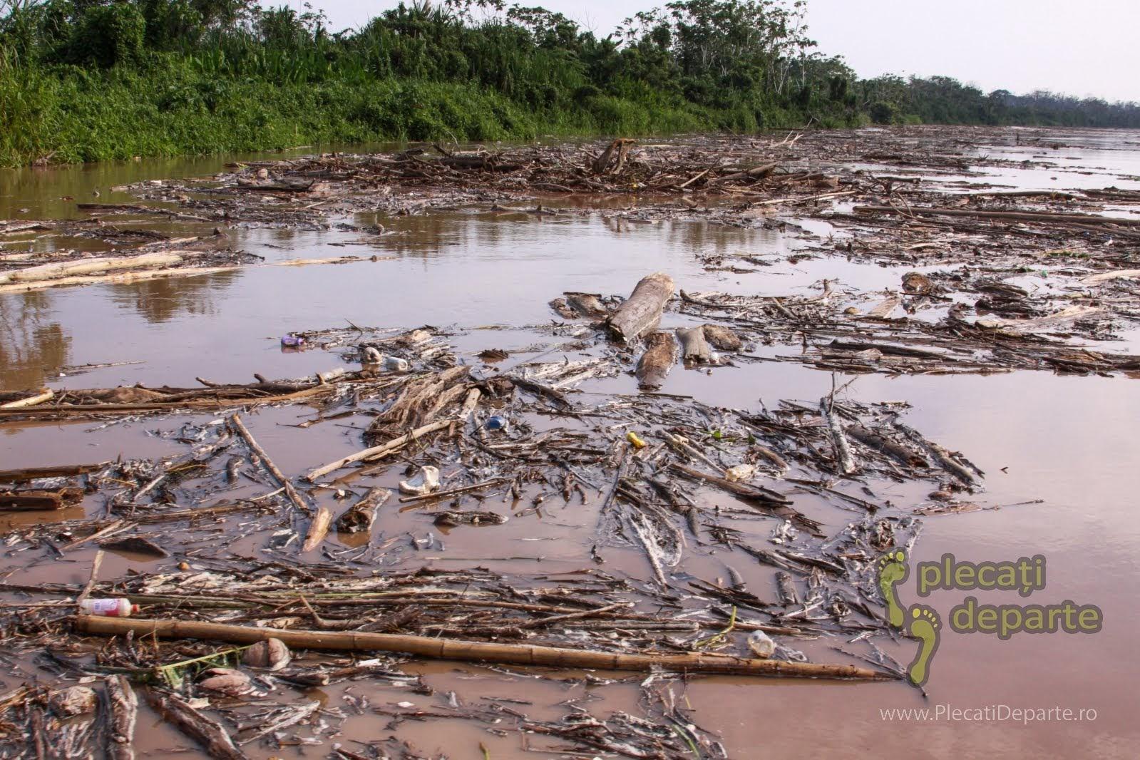 Acumulari de lemne pe raul Huallaga, afluent al fluviului Amazonian, in jungla amazoniana, in Peru