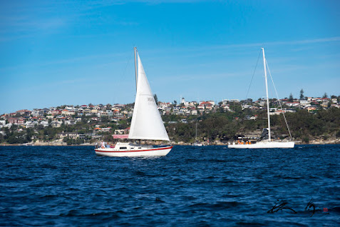 紺碧色の海を渡るヨット
