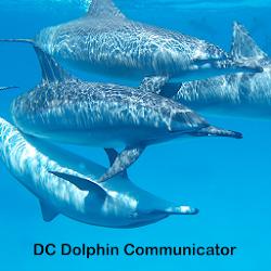 DC Dolphin Comm Free