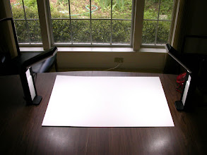 Photo: White cardboard from art supply store.Lights from office supply store.