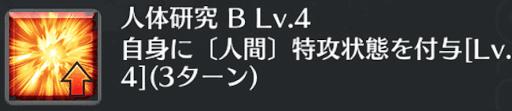 人体研究[B]